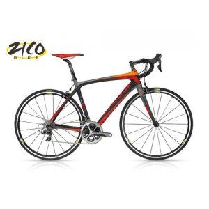profesjonalny rower szosowy